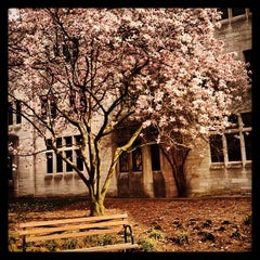 Photo taken at Indiana Memorial Union by Jared M. H. on 4/14/2013