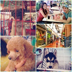Photo taken at Cartimar Pet Center by Bheng A. on 6/10/2013