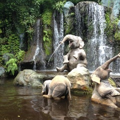 Photo taken at Jungle Cruise by Amber B. on 5/19/2013