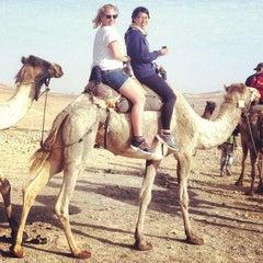 Photo taken at Bedouin Campsite by Judit U. on 11/12/2013