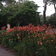 Photo taken at Hidden Falls Regional Park by Joan F. on 7/29/2015
