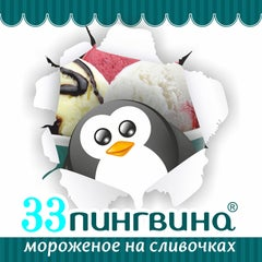 Фото 33 пингвина в соцсетях
