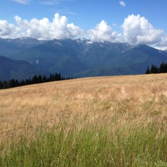 Photo taken at Olympic National Park by Cindy B. on 7/23/2015