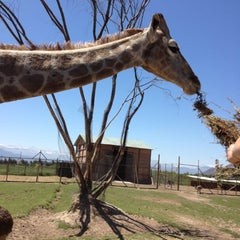 Photo taken at Parque Safari by Sole R. on 11/2/2012