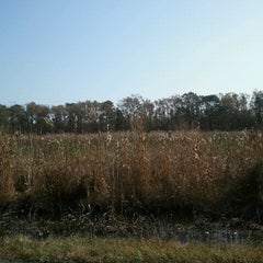 Photo taken at Pungo, VA by Amy S. on 11/2/2012