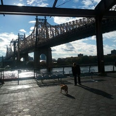 Photo taken at 63rd St Dog Run by Meredith K. on 10/31/2012
