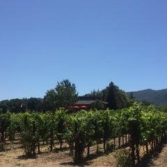 Photo taken at Little Vineyards & Winery by Karen M. on 7/18/2015