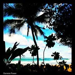 Photo taken at Ehukai Beach by Daniela A. on 3/10/2013
