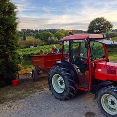 Photo taken at Agriturismo Guardastelle - Sovestro in Poggio Winery by Fausto M. on 9/21/2014