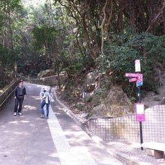 Photo taken at Wan Chai Gap Road 灣仔峽道 by Tony L. on 1/12/2014