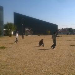Photo taken at Universidad TecMilenio Campus Cuautitlán Izcalli by Isaac G. on 12/6/2014
