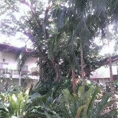 Photo taken at โรงแรมบ้านต้นไม้ (The Tree House Hotel) by Vanalee N. on 10/21/2014