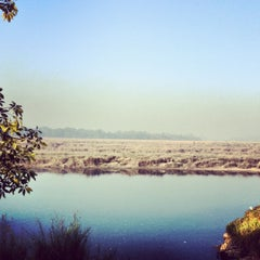 Photo taken at Chitwan Jungle Wildlife Camp by Tamim S. on 11/20/2012