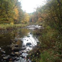 Photo taken at New Hampshire by Pete D. on 10/14/2014