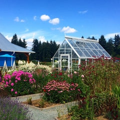 Photo taken at Krause Berry Farms & Estate Winery by Elaine B. on 7/24/2015