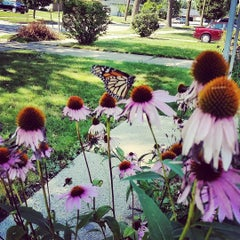 Photo taken at McGovern Park by Pami B. on 8/16/2015