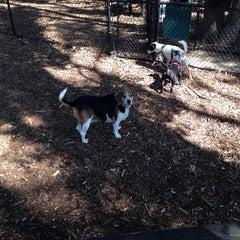 Photo taken at Wolfe's Pond Park by Papa J. on 9/23/2014