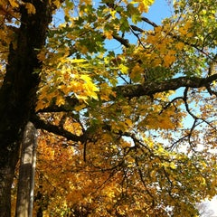 Photo taken at Wallace Park by Erica S. on 11/5/2012