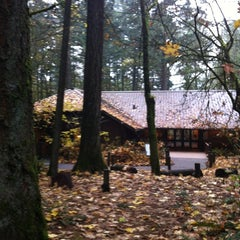 Photo taken at Tryon Creek State Park by Erica S. on 11/16/2012