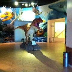 Photo taken at Museo de Historia Natural Ecatepec by oskar g. on 2/24/2014