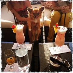 Das Foto wurde bei Darwin's Bar von Josef T. am 5/9/2013 aufgenommen