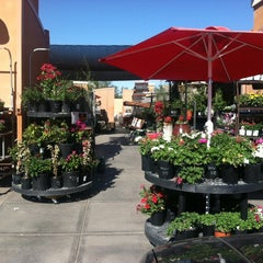 Photo taken at Maricopa Ace Hardware by Dorothy H. on 2/24/2014