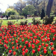 Photo taken at Sherwood Gardens by Thomas N. on 4/8/2012