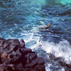 Photo taken at The Point At Poipu by Josh L. on 5/6/2013