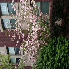 Photo taken at SIUE - Woodland Hall by Anne Mims A. on 4/25/2015