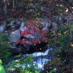 Photo taken at Burke Lake by Cathi E. on 10/20/2012