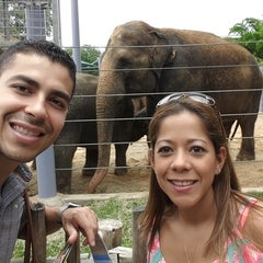 Photo taken at African Forest @ Houston Zoo by Marielos A. on 6/26/2014