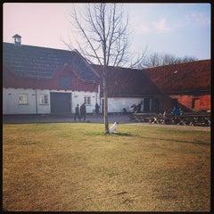 Photo taken at Aarstidernes Gårdbutik by AnnSofie H. on 2/23/2014