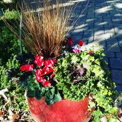 Photo taken at Watters Garden Center by Ken L. on 10/19/2015