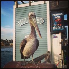 Photo taken at Oceanside Pier by Joann W. on 5/4/2013