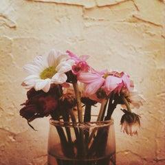 Photo taken at Artbridge Bookstore Café by VaChé H. on 7/27/2015