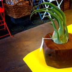 Photo taken at Potted by Adrian P. on 12/23/2014