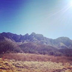 Photo taken at 24 Hour Town, Old Pueblo by Amanda M. on 11/29/2014