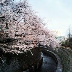 Photo taken at 哲学堂公園 by Mami on 4/7/2012