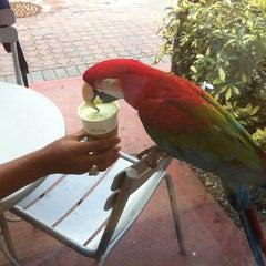 Photo taken at Starbucks by Carolyne G. on 8/7/2012