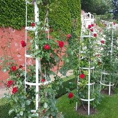 Photo taken at Ledeburská zahrada | Ladeburg Garden by Lukáš P. on 6/8/2013