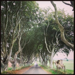 Photo taken at The Dark Hedges by Andrea C. on 9/28/2014
