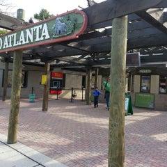 Photo taken at Zoo Atlanta by Erik L. on 12/2/2012