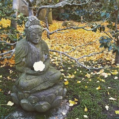 Photo taken at Lotus Land by Marjan R. on 1/10/2015