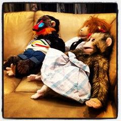 Photo taken at Three Monkeys by Phil M. on 3/29/2012
