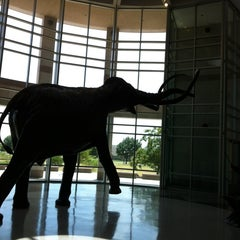 Photo taken at Sam Noble Oklahoma Museum of Natural History by April B. on 7/17/2012