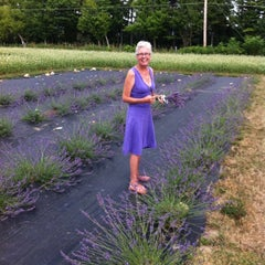 Photo taken at Lockwood Lavender Farm by Peter D. on 7/15/2012