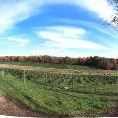 Photo taken at Gaver Farm by Steve S. on 10/23/2011