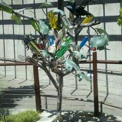 Photo taken at Springs Preserve by Kristi L. on 8/20/2012