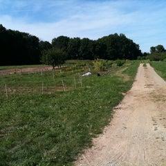 Photo taken at MSU Student Organic Farm by Pablo C. on 8/19/2011