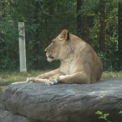 Photo taken at Blank Park Zoo by Seth H. on 7/12/2012